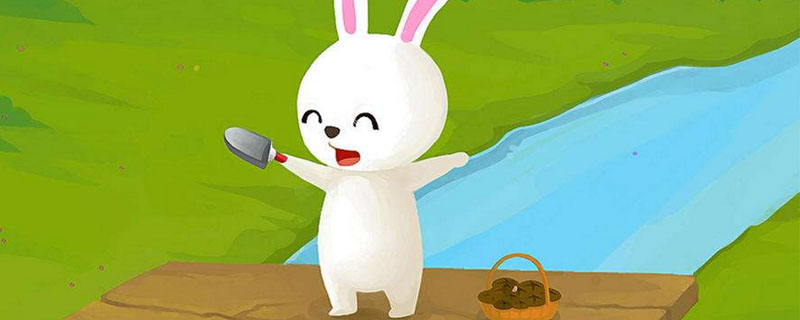 小白兔的故事