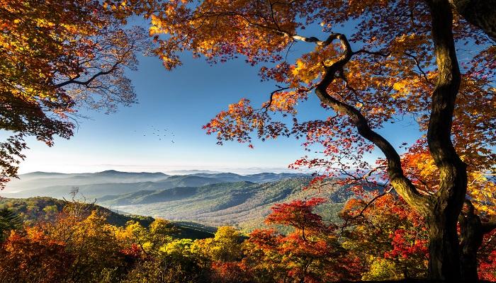 草原上的秋风主要内容