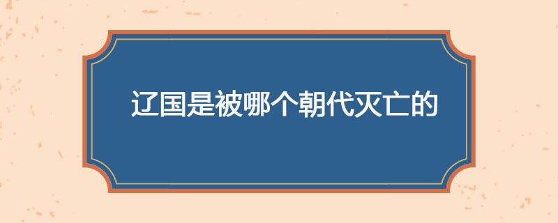 辽国是被哪个朝代灭亡的