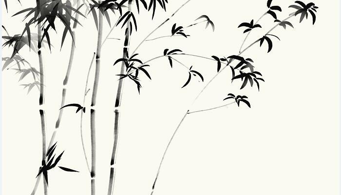 竹石用了什么写作手法