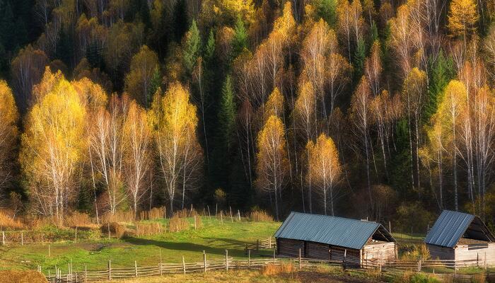 秋声赋用了哪些修辞手法来写秋声