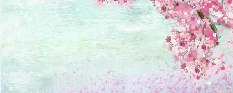 春晓描写的是春天什么时间的景色